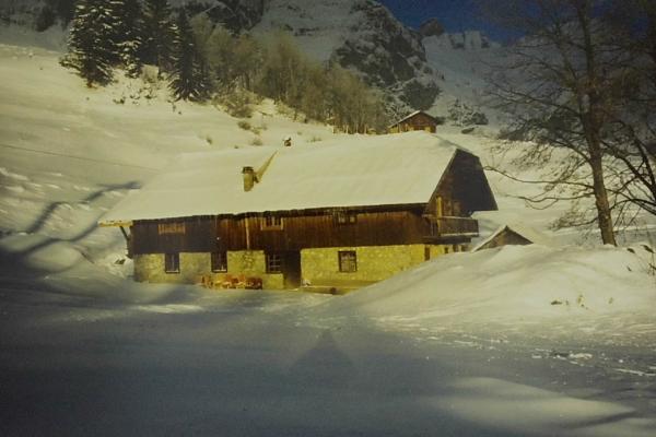 1990 - premier hiver