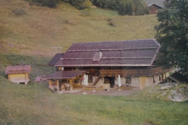 1996 - tavaillonage du toit et petit chalet